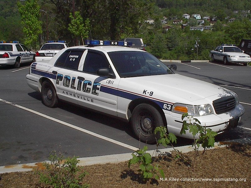 Asheville_NC_K9_Crown_Vic1.jpg (152906 bytes)